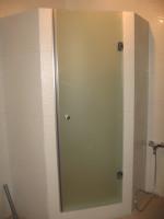 Стеклянная душевая дверь